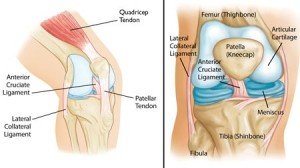 physiotherapy for knee pain treatment
